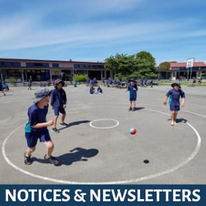 Notices & Newsletters